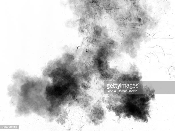 full frame of forms and figures of smoke of colors black and gray in ascending movement , on a white background - fantasma fotografías e imágenes de stock