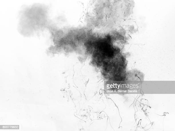 Full frame of forms and figures of smoke of colors black and gray in ascending movement , on a white background