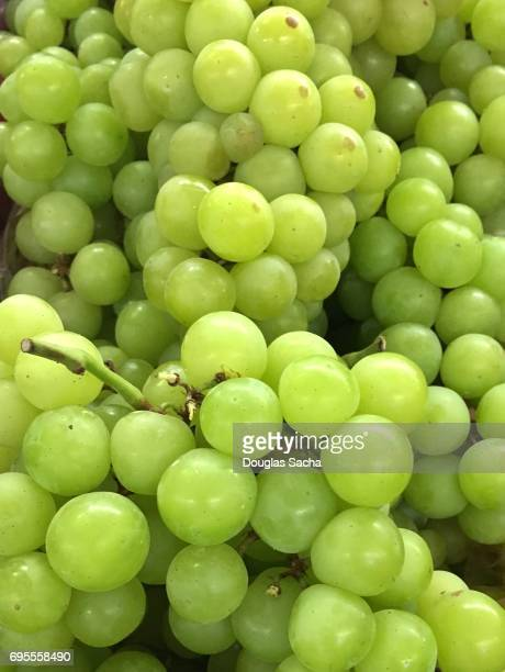 full frame of fresh white grapes (genus vitis) - chardonnay grape stock photos and pictures