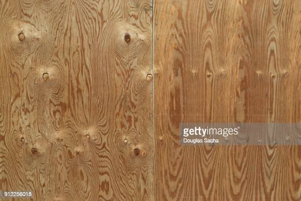 Full frame of plywood boards with natural wood grain