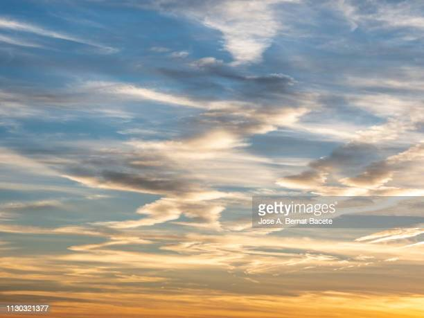 full frame of the low angle view of clouds in sky during sunset. - nuvoloso foto e immagini stock