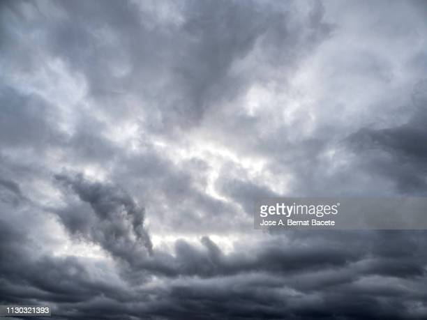full frame of the low angle view of clouds in sky during sunset. - nube temporalesca foto e immagini stock