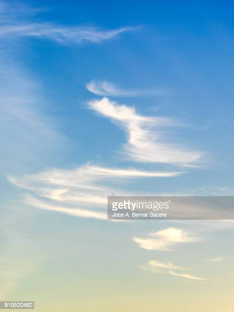 full frame of the low angle view of clouds of colors in sky during sunset. valencian community, spain - vertical stock pictures, royalty-free photos & images