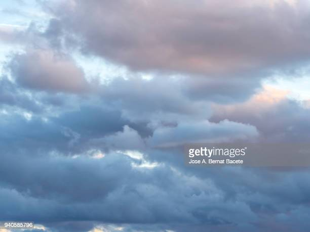 full frame of the low angle view of clouds of colors in sky during sunset with crepuscular light. valencian community, spain - bedeckter himmel stock-fotos und bilder