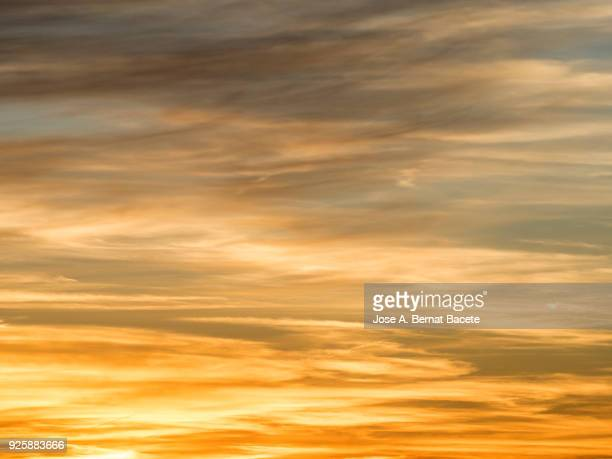full frame of the low angle view of sky and clouds of yellow and orange color and the shining sun. valencian community, spain - sky only stock pictures, royalty-free photos & images