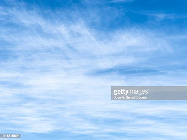 full frame of the low angle view of sky blue and clouds  of white and gray color. - light blue stock pictures, royalty-free photos & images