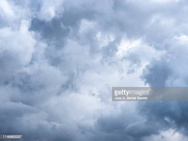 full frame of the low angle view of white and gray clouds of rain and storm. valencian community, spain - paisaje con nubes fotografías e imágenes de stock