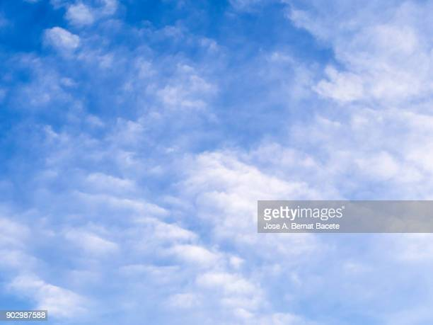 full frame of the low angle view of white color clouds  with a blue sky. valencian community, spain - colorful sunset stock photos and pictures