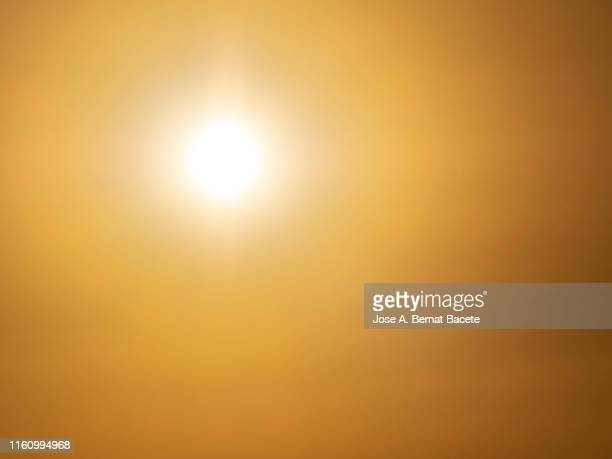 full frame of the sky with the brilliant sun to the sunset. - heat haze stock pictures, royalty-free photos & images