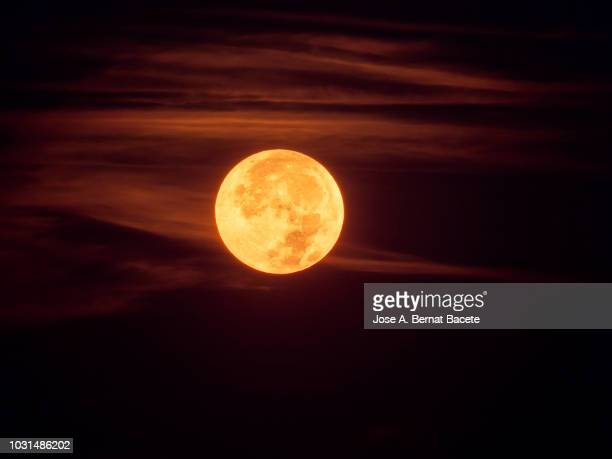 full frame of the supermoon of yellow color on a black sky with some high clouds of orange color. valencia, spain - 月の光 ストックフォトと画像