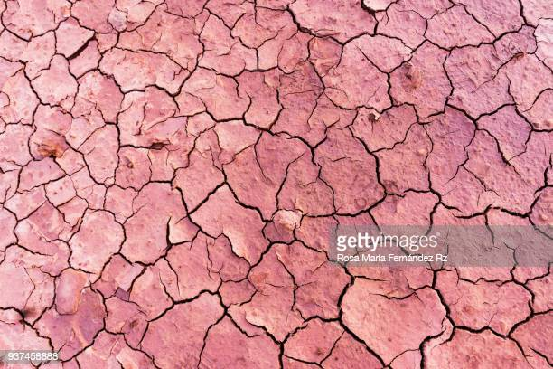 full frame of the textures, drawings and colors of the dry land with and crevice for the drought. - cambio climático fotografías e imágenes de stock