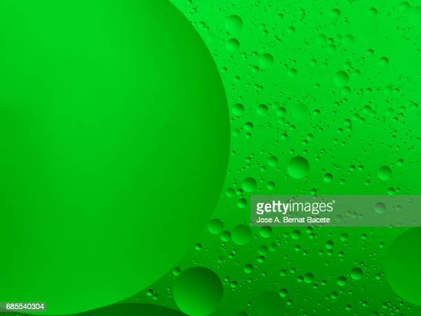 Full frame of the textures formed by the bubbles and drops of oil in the shape of circle floating on a green color background