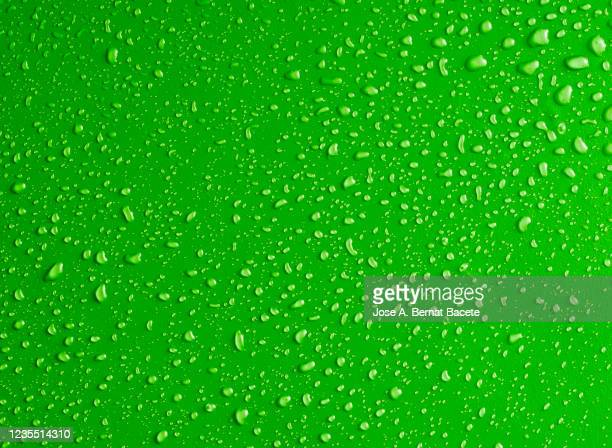 full frame of the textures formed by the bubbles and drops of water on a green background. - 垂れる ストックフォトと画像