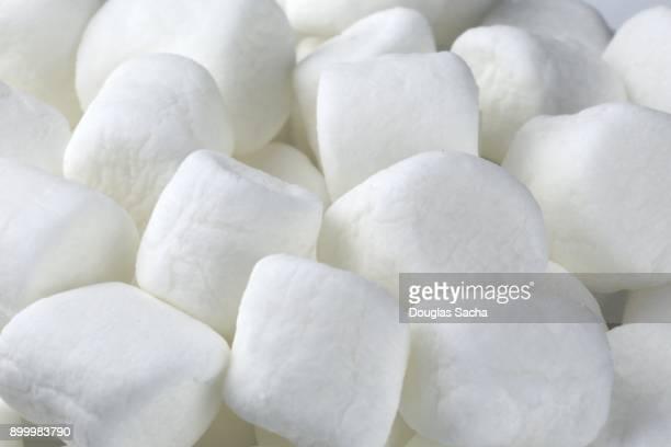 full frame of white mini marshmallows (althaea officinalis) - wollig stockfoto's en -beelden