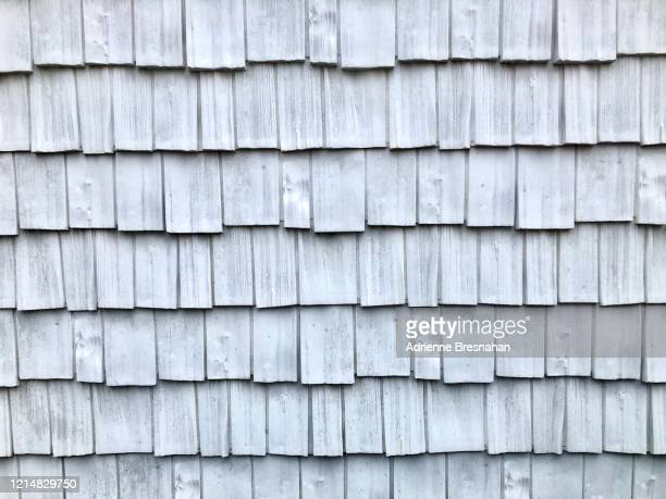 full frame of white shingles - herpes zoster foto e immagini stock