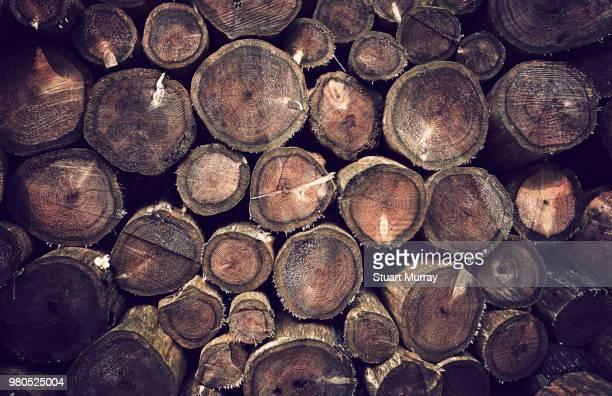 Full frame of wooden logs