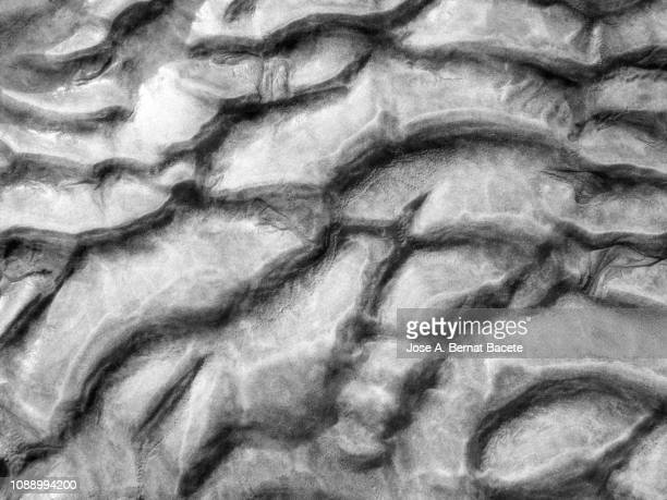 Full frame  setting of the textures of the grains of sand of a dune, undulating by the force of the wind on a gray background