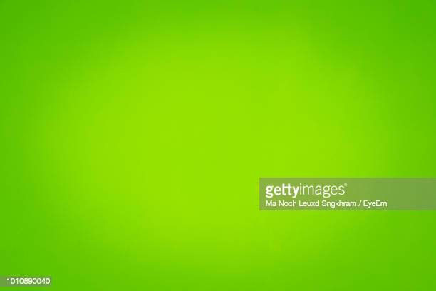 full frame shot of abstract green background - grüner hintergrund stock-fotos und bilder