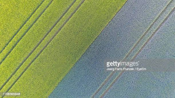 full frame shot of agricultural field - parallel stock pictures, royalty-free photos & images