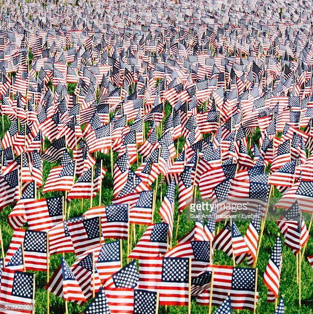full frame shot of american flags at cemetery - memorial day background stock pictures, royalty-free photos & images