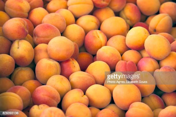 Full frame shot of Apricots