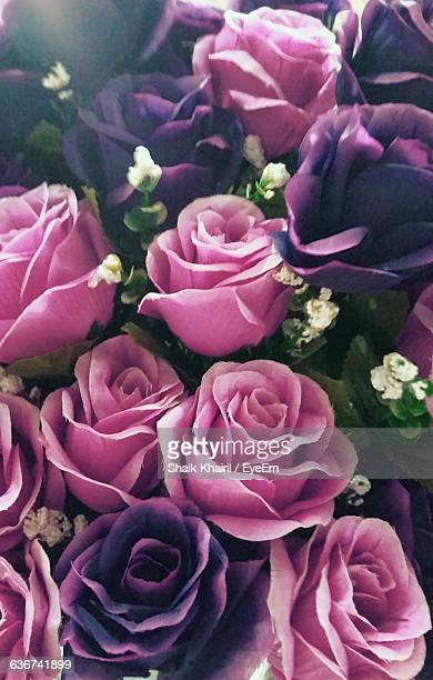 Full Frame Shot Of Artificial Pink And Purple Roses In Bouquet