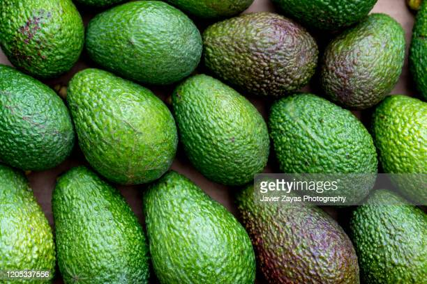 full frame shot of avocados - fatty acid stock pictures, royalty-free photos & images