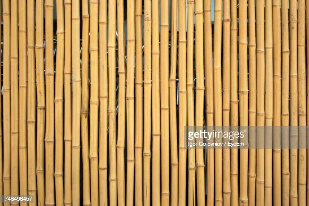 full frame shot of bamboo wall - bamboo - fotografias e filmes do acervo