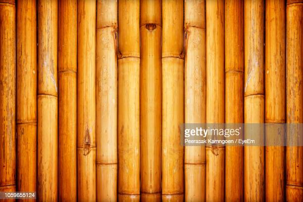 full frame shot of bamboos - bamboo stock photos and pictures