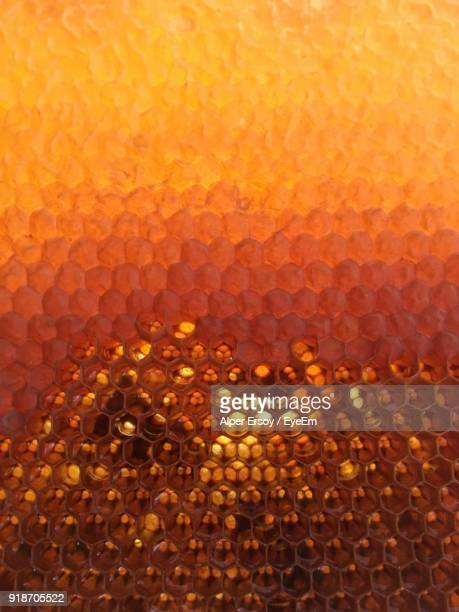 full frame shot of beehive - honeycomb stock pictures, royalty-free photos & images