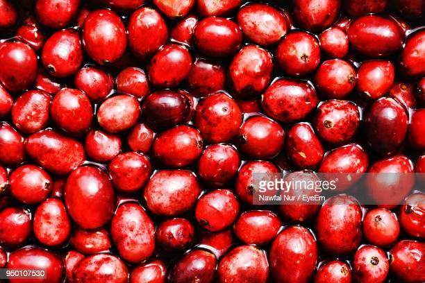 full frame shot of berry fruits - nawfal nur stock pictures, royalty-free photos & images