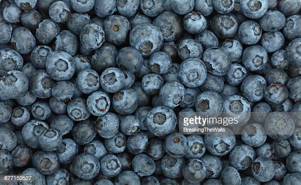 Full Frame Shot Of Blueberry Fruits