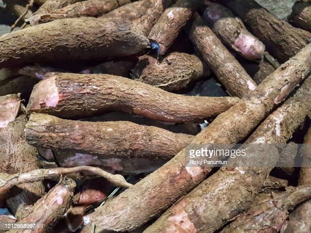 full frame shot of cassava - root vegetable stock pictures, royalty-free photos & images