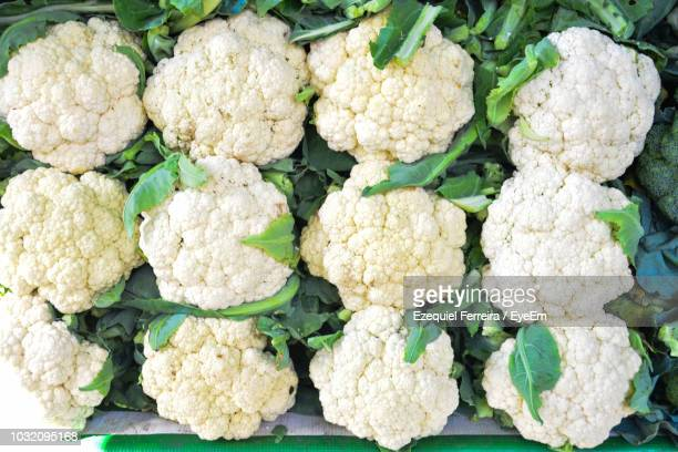 full frame shot of cauliflowers for sale at market - cauliflower stock pictures, royalty-free photos & images