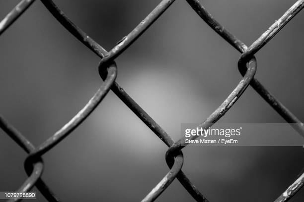 full frame shot of chainlink fence - steve matten stock pictures, royalty-free photos & images