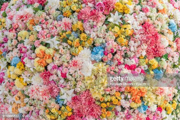 full frame shot of colorful flowers in market - 豊富 ストックフォトと画像