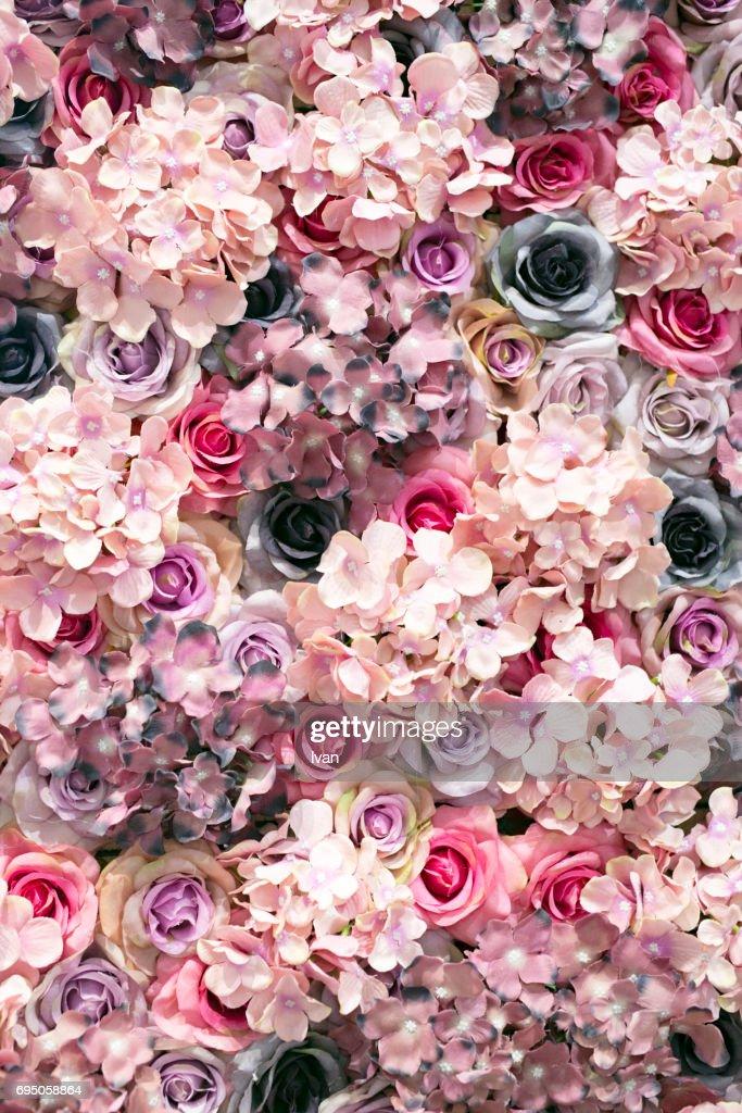 Full Frame Shot Of Colorful Flowers : Stock Photo