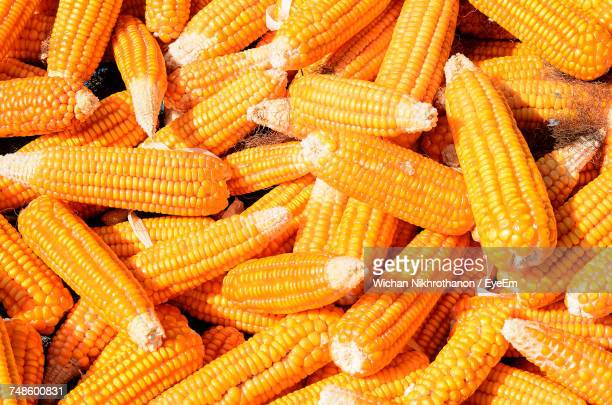 full frame shot of corn - corn cob stock photos and pictures