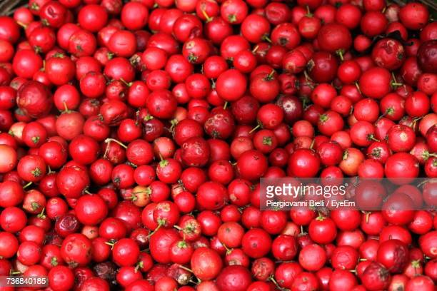 Full Frame Shot Of Cranberries
