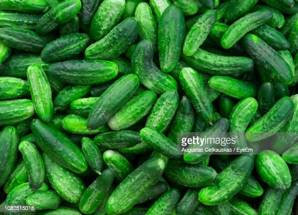 full frame shot of cucumbers for sale at market - cucumber stock pictures, royalty-free photos & images