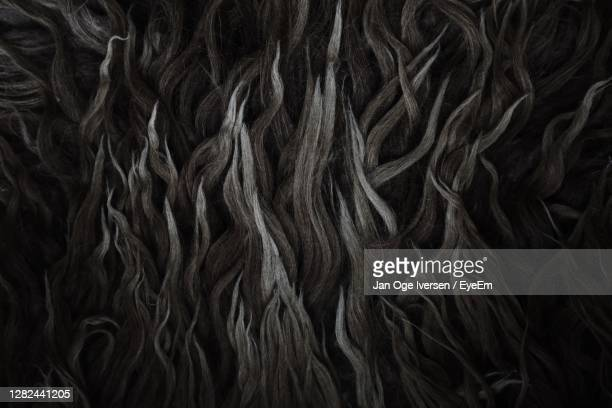full frame shot of dark wool fibres background - wool stock pictures, royalty-free photos & images