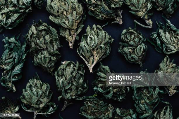 full frame shot of dried marijuana leaves on table - medical cannabis stock pictures, royalty-free photos & images
