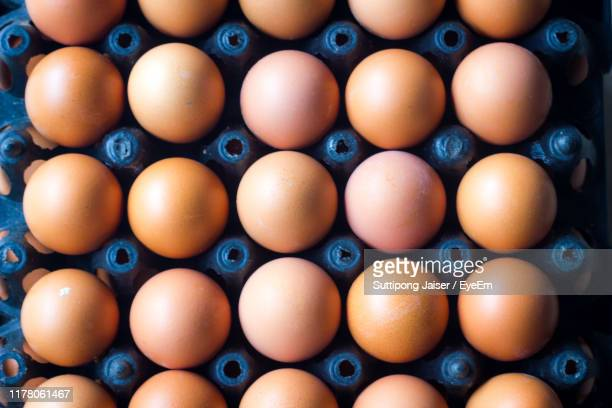 full frame shot of eggs in carton - carton stock pictures, royalty-free photos & images