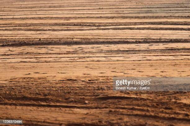 full frame shot of field - brown stock pictures, royalty-free photos & images