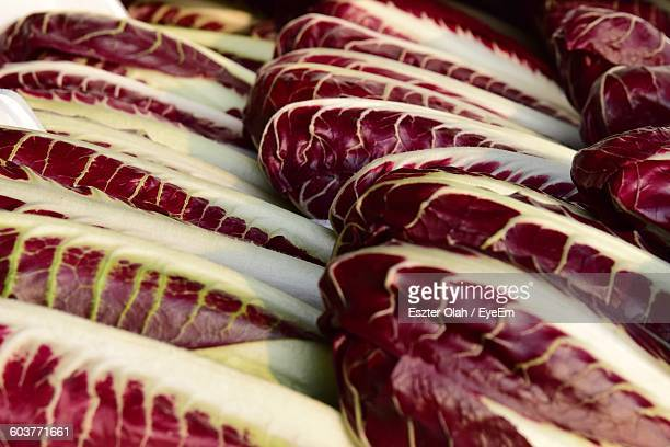 Full Frame Shot Of Fresh Radicchio At Market