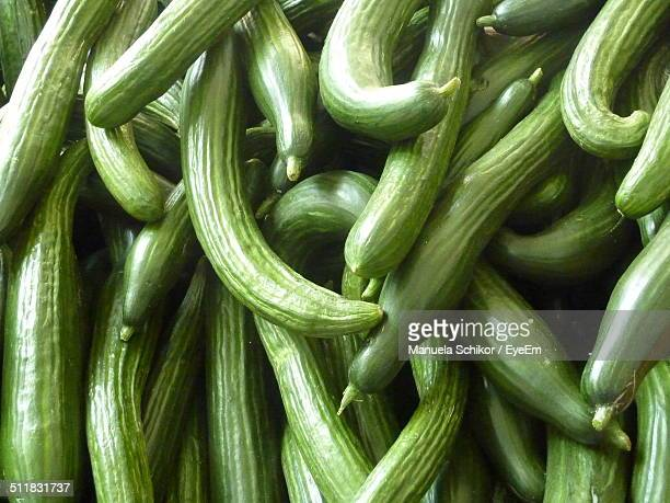 full frame shot of fresh sponge gourds - loofah stock photos and pictures