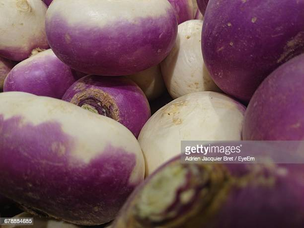 full frame shot of fresh turnips - turnip stock pictures, royalty-free photos & images