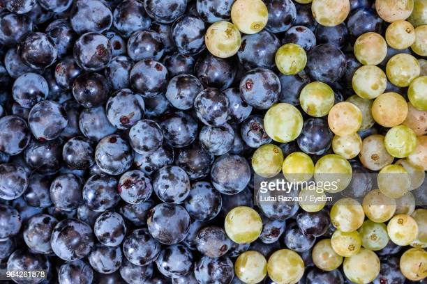 full frame shot of grapes for sale at market - lutai razvan stock pictures, royalty-free photos & images