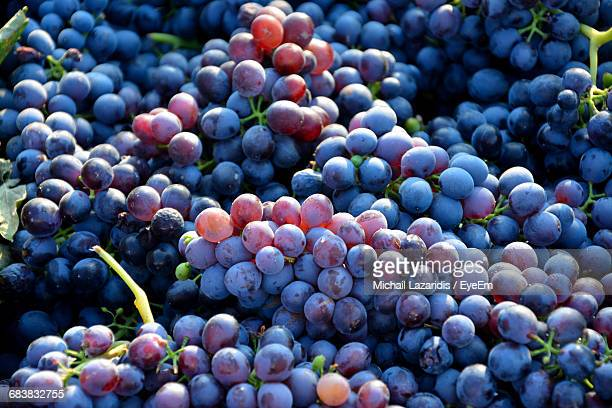 Full Frame Shot Of Grapes