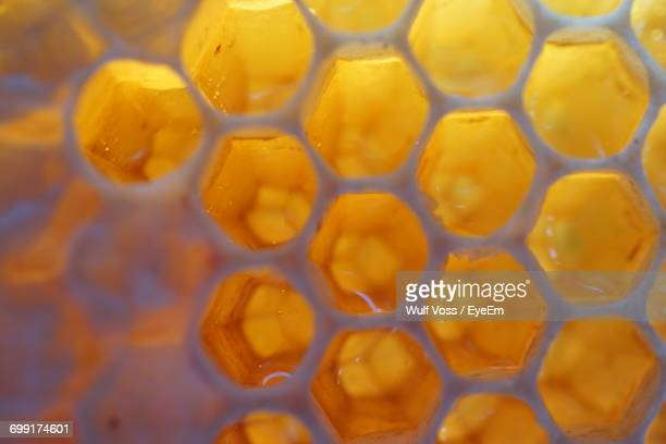 full frame shot of honeycomb - honeycomb stock pictures, royalty-free photos & images